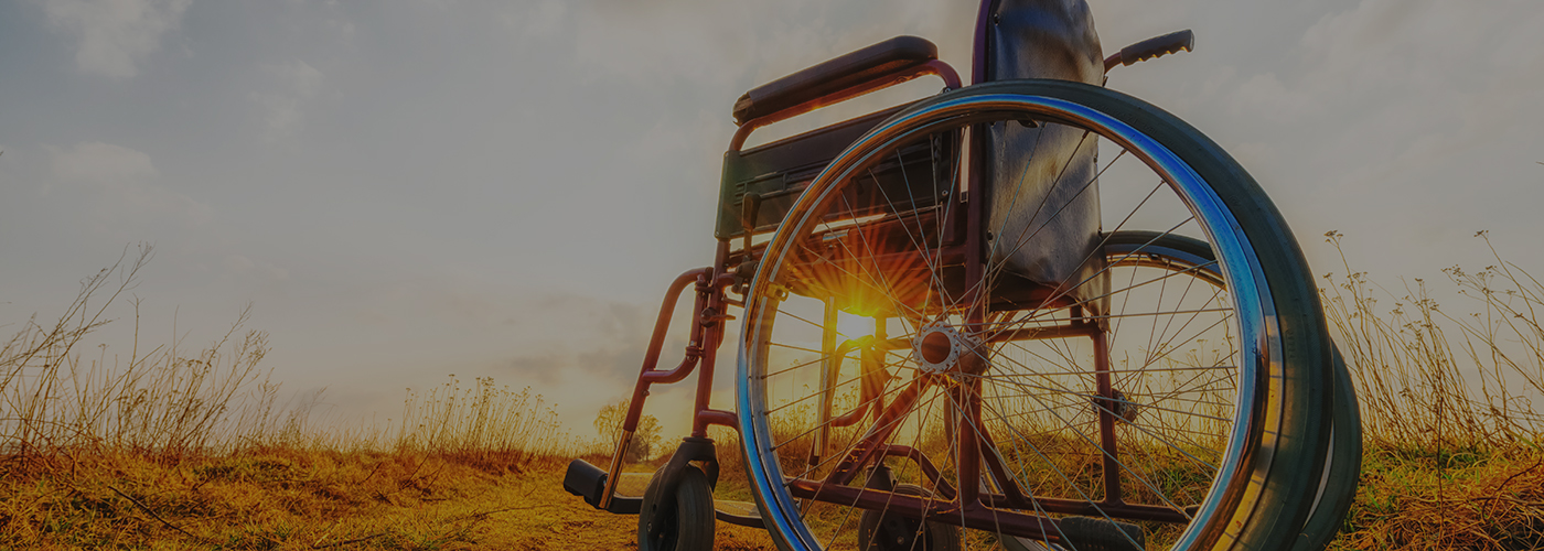 Empty Wheelchair On The Meadow